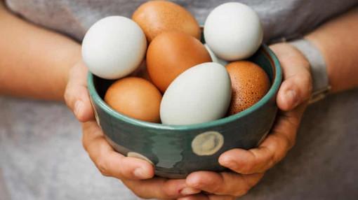 Trứng gà có bổ hơn trứng vịt, trứng ngỗng?