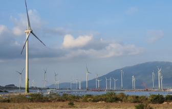 Ninh Thuận: Khánh thành tổ hợp năng lượng tái tạo lớn nhất Đông Nam Á