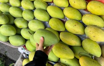 Hàng dội chợ, trái cây rớt giá