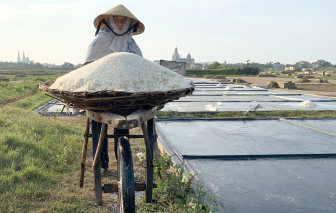 """Làm rõ vụ hợp tác xã ở Nghệ An """"ngâm"""" hơn nửa tỷ tiền hỗ trợ diêm dân"""