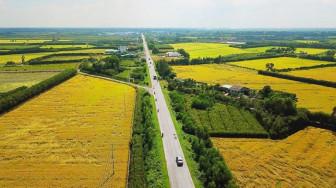 Chủ tịch nước Nguyễn Xuân Phúc mong muốn Củ Chi, Hóc Môn đẩy mạnh nông nghiệp số