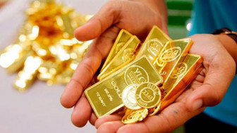 Giá vàng trong nước lên mức cao nhất trong hai tuần