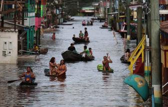 Brazil: Hàng trăm ngàn người chịu cảnh lũ lụt từ các con sông ở Amazon