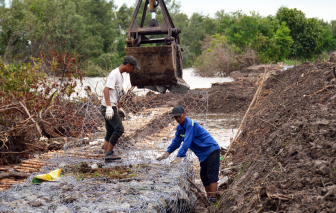 """Giá vật liệu xây dựng tăng bất thường, Cà Mau """"cầu cứu"""" Thủ tướng Chính phủ"""