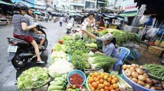 TPHCM sẽ dừng hoạt động chợ tự phát, xe công nghệ, xe liên tỉnh, bus, taxi