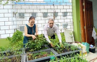 Gieo hy vọng từ những mầm xanh