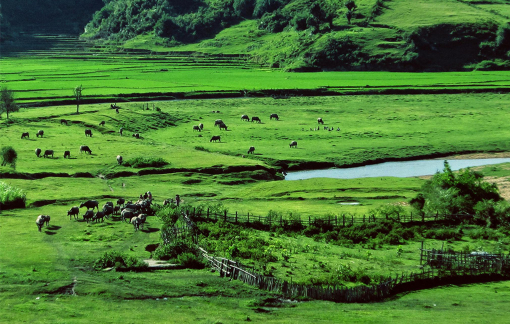 Kon Tum kêu gọi đầu tư 2 sân golf với tổng diện tích gần 174 ha