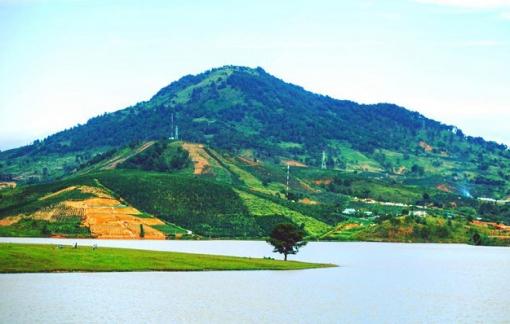 Lâm Đồng: Đề xuất cho doanh nghiệp bất động sản khảo sát dự án 165 ha trên rừng phòng hộ