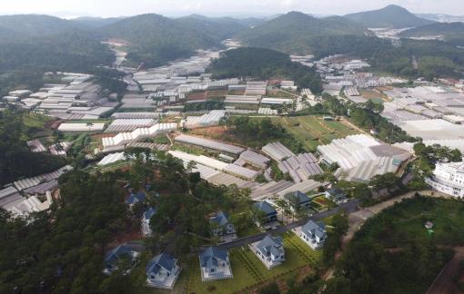 """Doanh nghiệp muốn tài trợ Lâm Đồng lập quy hoạch dự án 120 ha có """"dính"""" đất rừng tự nhiên"""