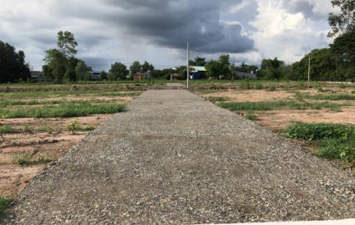 Bà Rịa Vũng Tàu kiểm tra tình hình xây dựng, rao bán đất nông nghiệp phân lô