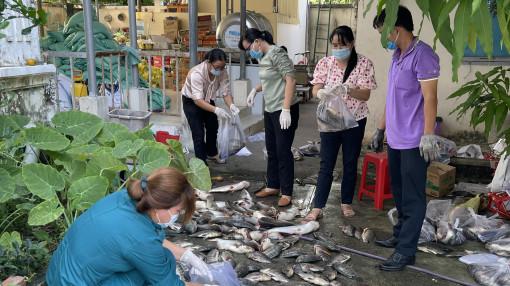 Củ khoai, con cá, bó rau... bên nhau lúc hoạn nạn