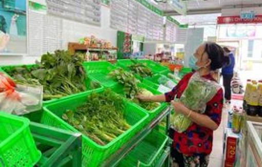 Tây Ninh lập bãi trung chuyển hàng hóa về TPHCM