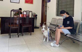 Dắt chó đi ra ngoài 2 phút, cô gái Hà Nội bị phạt 2 triệu đồng