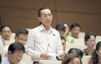 ĐBQH Trần Hoàng Ngân: TPHCM luôn ghi nhớ, tri ân những tấm lòng của nhân dân cả nước