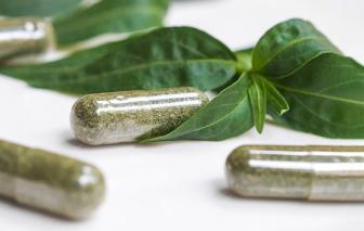 Bộ Y tế: Đề nghị kiểm tra việc nguyên liệu sản xuất thuốc có chứa xuyên tâm liên tăng giá đột biến