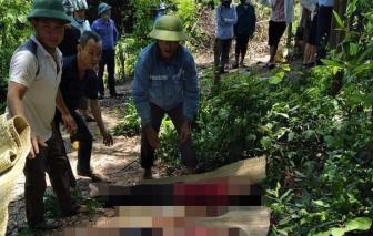 Lên núi hái sim, 3 học sinh rơi xuống khe suối tử vong