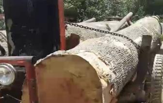 Đắk Lắk: Xác minh vụ 40 người cầm hung khí bao vây kiểm lâm cướp phương tiện cùng tang vật