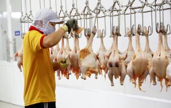Giá gà còn 6.000 đồng/kg, heo giảm mạnh, người tiêu dùng vẫn khó mua được thịt