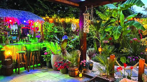 Biến vườn nhà thành… rừng nhiệt đới