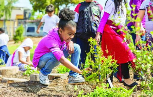 COVID-19 đưa trường học ra thiên nhiên