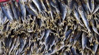 Bán 5 ký cá khô qua online, bị lừa mất sạch 150 triệu đồng