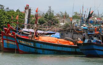 Huế, Bình Định kêu gọi tàu thuyền vào tránh bão số 6