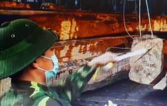 7 xe container chở gỗ lậu, đá phấn quý trị giá hàng chục tỷ đồng từ Lào về Việt Nam