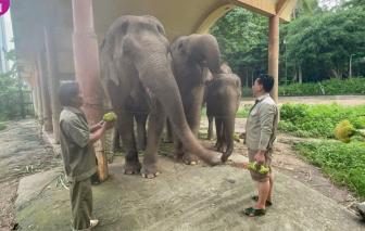 Siêu thị Nhật tặng thực phẩm cho thú nuôi trong Thảo Cầm Viên Sài Gòn
