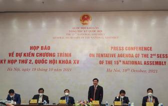 Quốc Hội sẽ đánh giá việc thực hiện công tác phòng chống dịch COVID-19