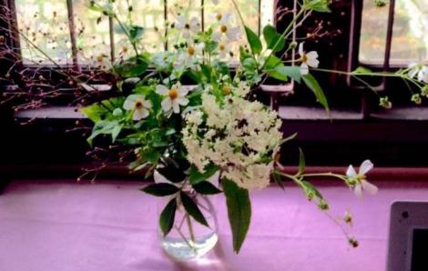 Cắm bình hoa dại để tan ưu phiền