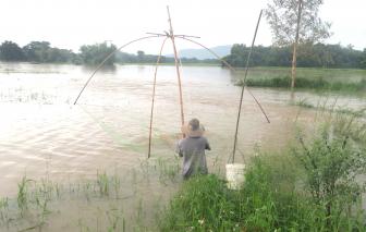 Người dân Phú Yên bơi xuồng thả lưới bắt cá sau áp thấp nhiệt đới