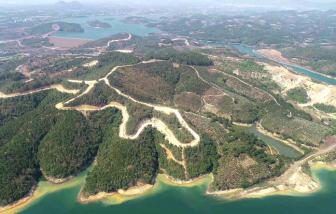 Để mất 257ha rừng, Công ty Sài Gòn - Đại Ninh bồi thường gần 19 tỷ đồng